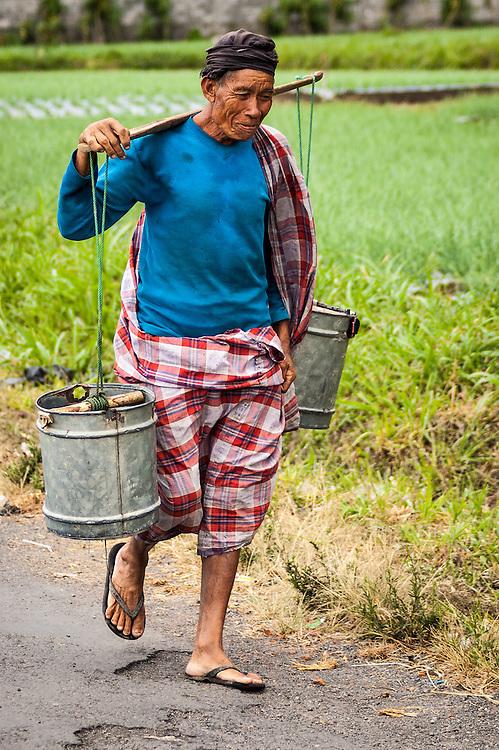 Portrait of a rice farmer walking along a road in Bali, Indonesia