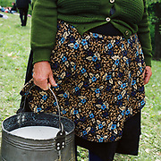 A Romanian peasant wearing a flowery apron holds a bucket of sheep's milk for making cheese at the Measurement of the Milk Festival, Botiza, Maramures, Romania. The Measurement of the Milk festivals take place at the beginning of May, when the shepherds bring the flocks, which have spend a few days grazing in the hills, to meet the villagers at a clearing where the measurement will take place.  The sheep are milked by their owners, and the yield of each family's animals measured to determine the quota of cheese that they will receive during that season.