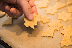 Close-up of a man placing fir tree shaped cookies on baking sheet in a baking tray, Munich, Bavaria, Germany