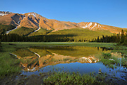 Rocky Mountains reflected in pond at sunset near Bow Summit<br /> Banff National Park<br /> Alberta<br /> Canada