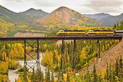 Alaska Railroad Passanger train crosses the Nenana River in Denali National Park in the Fall