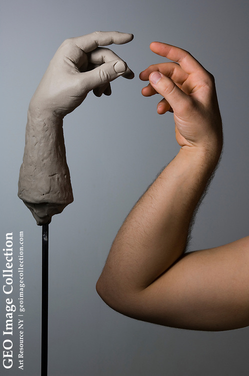 Clay sculpture of a human hand next to a human arm.
