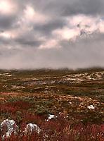 British Columbia Panorama from the Haines Highway. 2 of 4