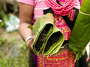 A Ko Pala ethnic minority woman sells wild fern shoots wrapped in banana leaves at Pak Nam Noi market, Phongsaly province, Lao PDR. The small town of Pak Nam Noi hosts a weekly market which is the meeting place for villagers from the nearby hill tribe villages and a place to sell their home grown produce.  It also sells a wide range of Chinese goods including clothes, toiletries and food products.