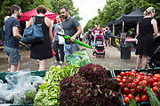 Wapping Market at Brussels Wharf in East London, UK. This weekly produce market gathers together some of the finest local farmers, producers and traders with stalls covering all locally sourced food, seasonal fruit and vegetables. Heritage tomatoes.