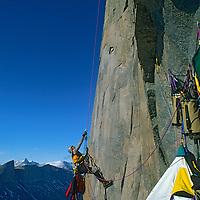 BAFFIN ISLAND, Canada, Jared Ogden jumars above bivvy high on Great Sail Peak.
