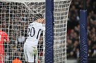 Tottenham Hostpur midfielder Deli Alli (20) craddling net during the Champions League match between Tottenham Hotspur and Real Madrid at Wembley Stadium, London, England on 1 November 2017. Photo by Matthew Redman.
