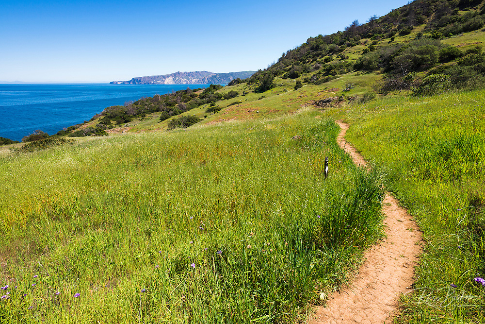 Pelican Bay trail, Santa Cruz Island, Channel Islands National Park, California USA