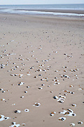 Snow among pebbles on the beach at Holme-Next-The-Sea in Norfolk, England, UK