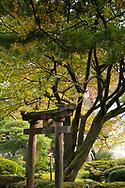 A stone gate surrounded by autumn foliage in the Kenrokuen Garden, Kanazawa, Ishigawa, Japan