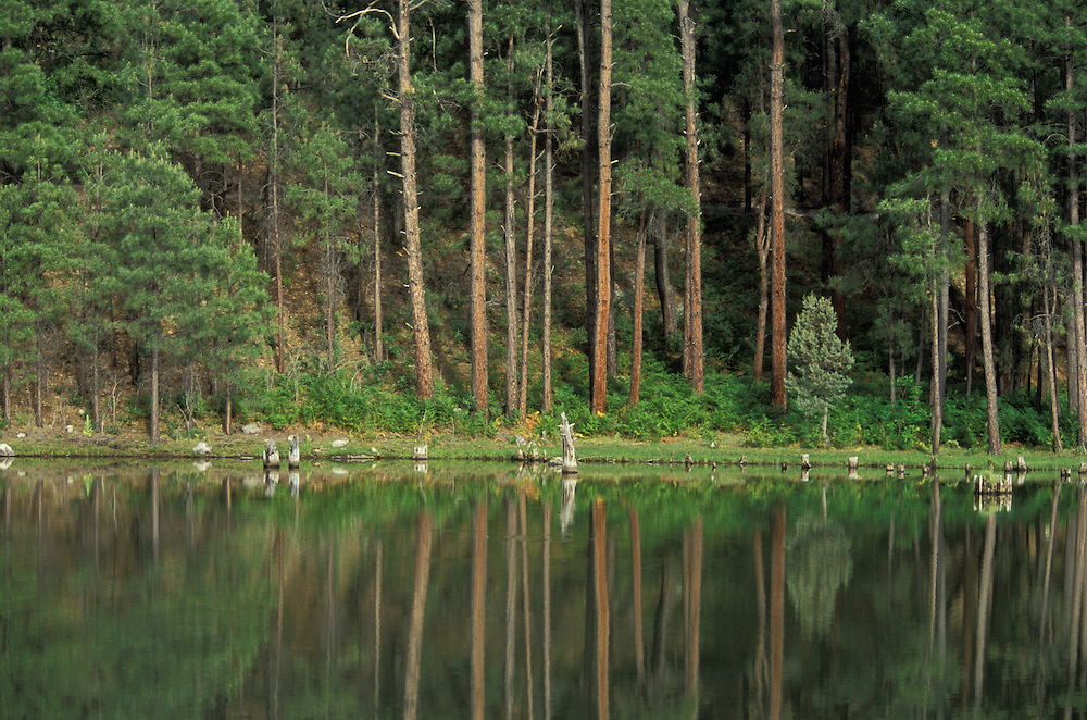 Point of Pines Lake, the San Carlos Apache Indian Reservation, Arizona, USA. June 2004.