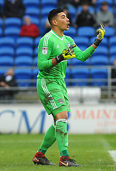 Neil Etheridge of Cardiff City gives orders - Mandatory by-line: Nizaam Jones/JMP- 13/01/2018 -  FOOTBALL - Cardiff City Stadium - Cardiff, Wales -  Cardiff City v Sunderland - Sky Bet Championship