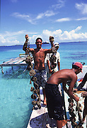 Black Pearl farm, Ahe, Tuamotus, Franch Polynesia (editorial use only, not model released)<br />