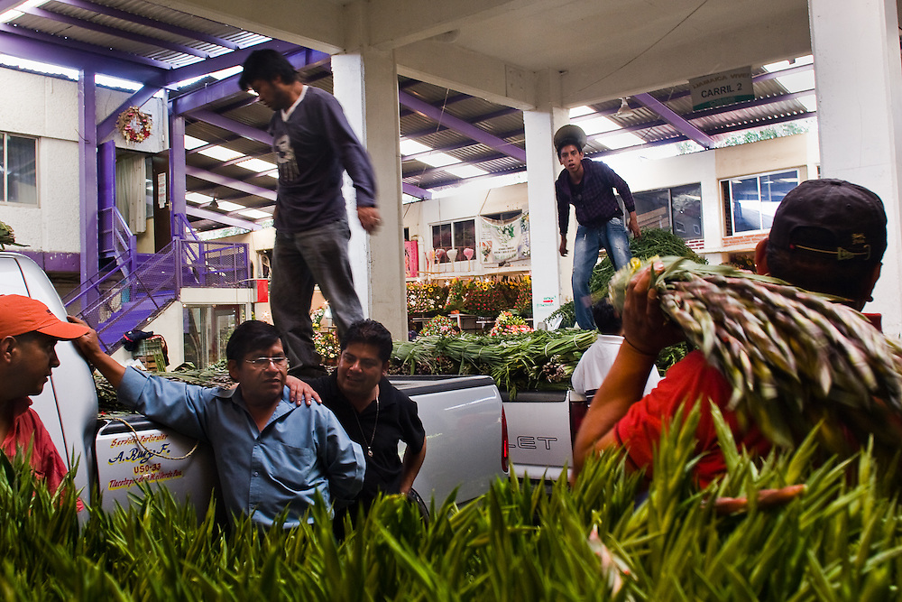 Flower workers unload trucks in Jamaica market, Mexico City.