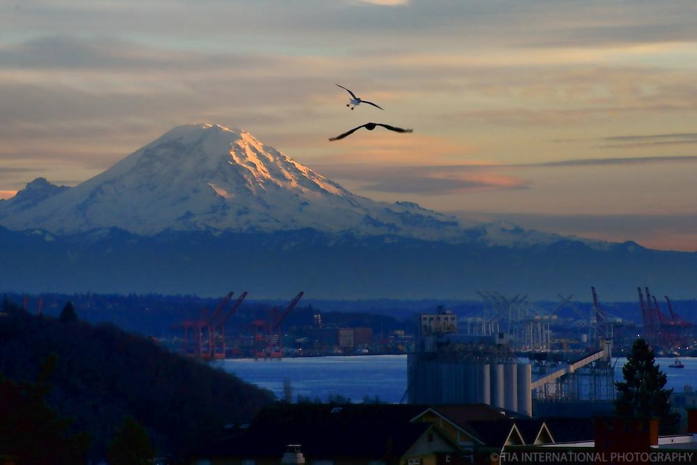 Mount Rainier & Port of Seattle