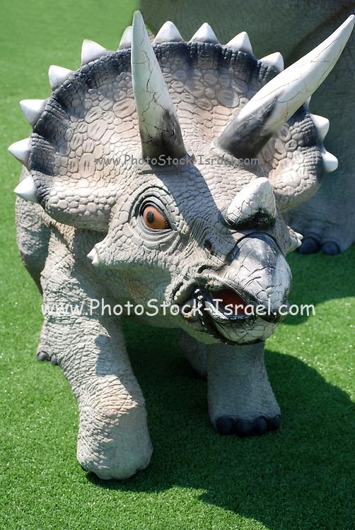 Triceratops three horned Dinosaur