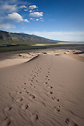 Foot prints cross a sand dune in the dune field of the Great Sand Dunes National Park and Preserve, Colorado.