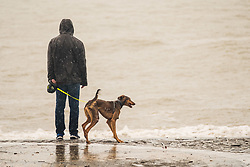 © Licensed to London News Pictures. 10/11/2018. Aberystwyth, UK. A wild, wet and stormy morning in Aberystwyth, with huge waves at high tide breaking along the promenade and sea defences of the coastal town on Cardigan Bay, west Wales. A man walks his dog along the promenade in the rain.Photo credit: Keith Morris/LNP