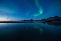 Northern Lights shine in sky over Ytresand beach, Moskenesøy, Lofoten Islands, Norway
