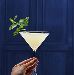 Cocktail_Drink_Girl_Spice_Alone