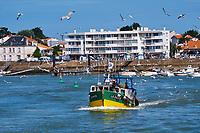 France, Vendée (85), Saint-Gilles-Croix-de-Vie, retour des sardiniers // France, Vendée, Saint-Gilles-Croix-de-Vie, sardines fishers