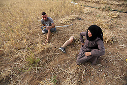 May 1, 2019 - Khan Younis, Gaza Strip, Palestinian Territory - Suhaib  Qudih, 33, and his sister Naziha Qudih, 38, who were lost their legs after they were shot by Israeli forces during the weekly border protests, harvest wheat crop at their field, in Khan Younis in the southern Gaza Strip, May 01, 2019. Unemployment rate in Palestine increased in 2018 to reach about 31% of the labour force participants compared with about 28% in 2017, where the number of unemployed individuals increased from 377 thousand in 2017 to 426 thousand in 2018  (Credit Image: © Ashraf Amra/APA Images via ZUMA Wire)