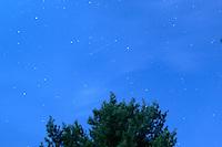 Perseid Meteor. Summer Night in New Jersey. Image taken with a Nikon D3s and 28 mm f/3.5 PC-E lens (ISO 800, 24 mm, f/4, 29 sec).