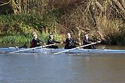 Crew: 134   W J18 4+   Godolphin & Latymer School Boat Club   GLT-MACBETH<br /> <br /> Wallingford Head 2017<br /> <br /> To purchase this photo, or to see pricing information for Prints and Downloads, click the blue 'Add to Cart' button at the top-right of the page.