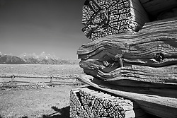 Shane Cabin, Grand Tetons, detail study, derelict buildings, Grand Teton Park
