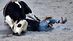 bull ride wreck, Jackson Hole Rodeo, Jackson Hole, Wyoming