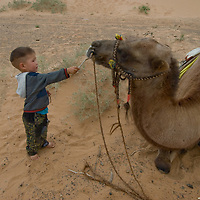 A Mongolian youngster plays with a bactrian camel in the Gobi Desert.