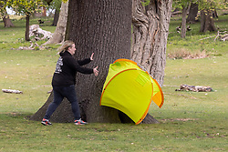 Licensed to London News Pictures. 03/05/2021. London, UK. A walker catches a popup tent after it blew away in the wind in Richmond Park. Members of the public brave the wind and rain as they enjoy a Bank Holiday Monday walk in Richmond Park, South West London. Today, weather forecasters predict high winds and driving rain with temperatures reaching 13c in London and the South East. Yesterday, Health Secretary Dominic Rabb admitted that masks could be with us for the summer as virtually all social restrictions will be lifted by June 21 2021. Photo credit: Alex Lentati/LNP