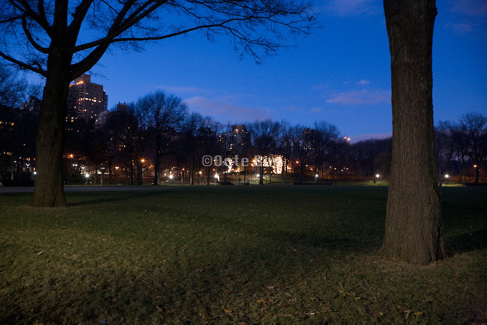 central Park NYC grass field illuminated by a park light