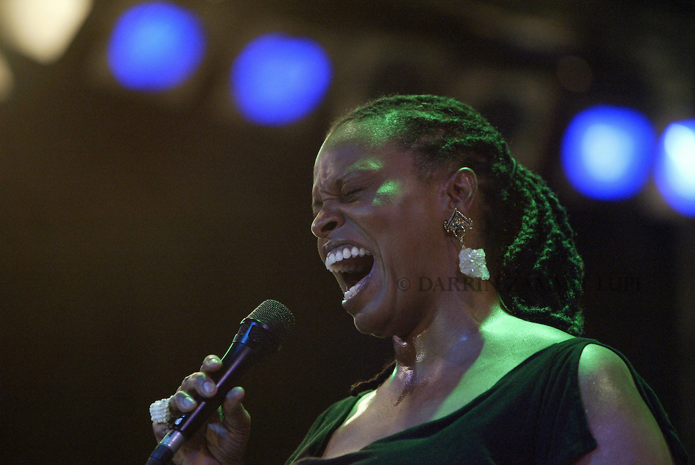 Dianne Reeves, 2003<br /> Photo by Darrin Zammit Lupi