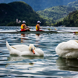 20150509: SLO, Rowing - 2015 World Rowing Cup Bled