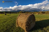 Hay bales with Big Mountain in Whitefish, Montana, USA