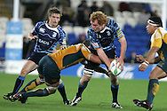 Cardiff Blues v Australia at the Cardiff City Stadium on Tuesday 24th Nov 2009. pic by Andrew Orchard, Andrew Orchard sports photography.  Paul Tito of the Cardiff Blues