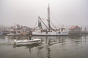 Shrimp boats tied up to dock on a foggy winter morning on Shem Creek in Charleston, South Carolina.