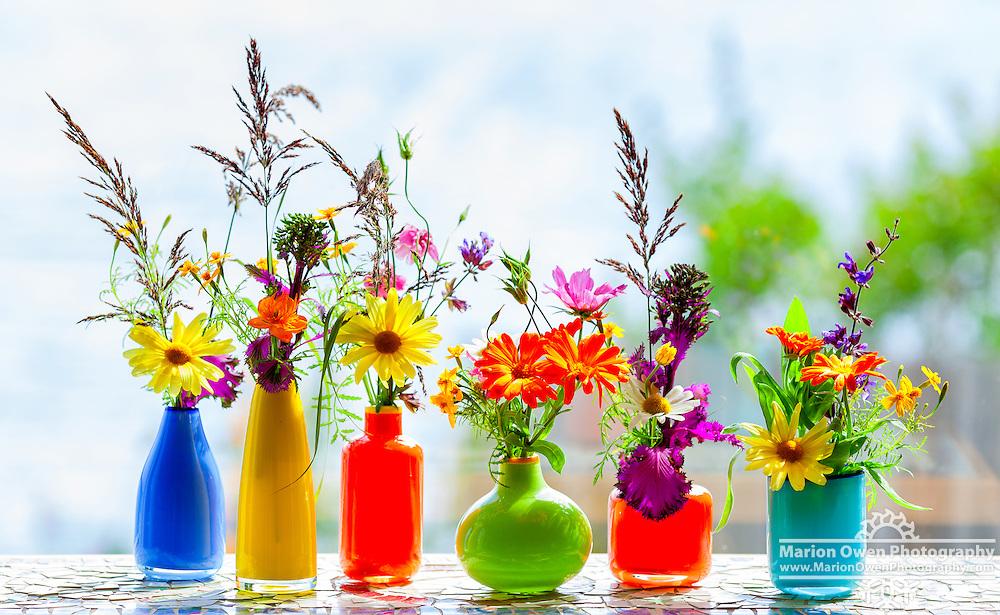 Glass vases filled with grasses, herbs, flowers, vegetable sprouts, from Kodiak, Alaska garden