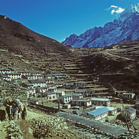 A Sherpa woman herds yaks carrying trekking equipment above Namche Bazaar, the leading commmercial center of Nepal's Khumbu region.  Behind is Mount Thamserku.  (This photo was taken in 1979, before the explosion of trekking and mountaineering activity in the region.)