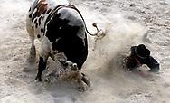 VS - HOMESTEAD - Sankeys Rodeo School. Nolan Leach valt van de stier. COPYRIGHT GERRIT DE HEUS