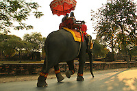 A fun and popular way to get around most the temples and sights of Ayutthaya is on an elephant.  Friendly mahouts dress up in colorful costumes and guide visitors around the sites and give you the chance to play with the elephants as well.