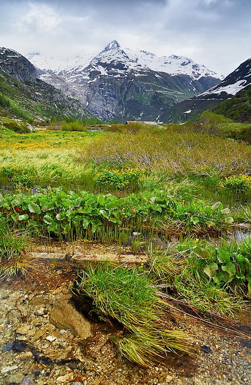 Switzerland - Furkahorn and Furka Pass from Rhone valley