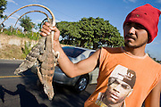 11 JANUARY 2007 - LEON, NICARAGUA:  A young man sells iguanas along a highway near Leon, Nicaragua on the road to the beaches in Poneloya, Las Senitas Nicaragua, about 10 miles from Leon. Nicaragua's Pacific beaches are relatively undiscovered. Small hotels and rental homes are starting to be developed but there is nothing like the rampant commercial development of Mexico's Pacific beaches. Iguanas are a popular delicacy in Nicaragua and are served either fried or in a soup.  PHOTO BY JACK KURTZ