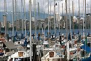 Marina full of sailboats in Vancouver, Canada.