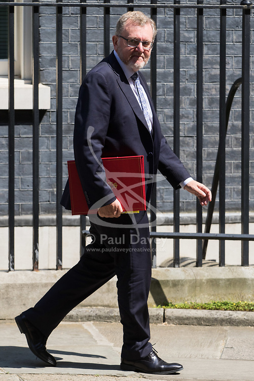 London, June 20th 2017. Scotland Secretary David Mundell leaves the weekly cabinet meeting at 10 Downing Street in London.