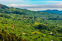 Beautiful landscape won road between Queen Elizabeth NP and Bwindi Impenetrable Forest, Uganda.