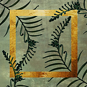 Collage with Cycas palm leave, geometric elements and textures