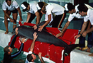 Atlantic Bottlenose Dolphins were first taken from the water on special stretchers that had holes for their fins.  Then they were loaded onto foam pads in the back of an enclosed truck for transport to the helicopter about a mile away.  It was a Sikorsky Medivac aircraft lined with foam.  A trainer and veterinarian traveled along keeping the dolphin moist by spraying them with water.     The trip would have taken 8-10 hours by truck.  Normally after such a move it takes two to four days before the dolphin settle down and begin to eat. The helicopter used is the fastest in the world and was able to make the trip in two and a half hours.  The effect was dramatic.  Within hours these dolphin transported by helicopter were eating and returning to settled behavior.  The Living Seas Aquarium, EPCOT, Buena Vista, Florida