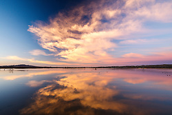 Sunrise clouds and pond reflection, Bosque del Apache, National Wildlife Refuge, New Mexico, USA.